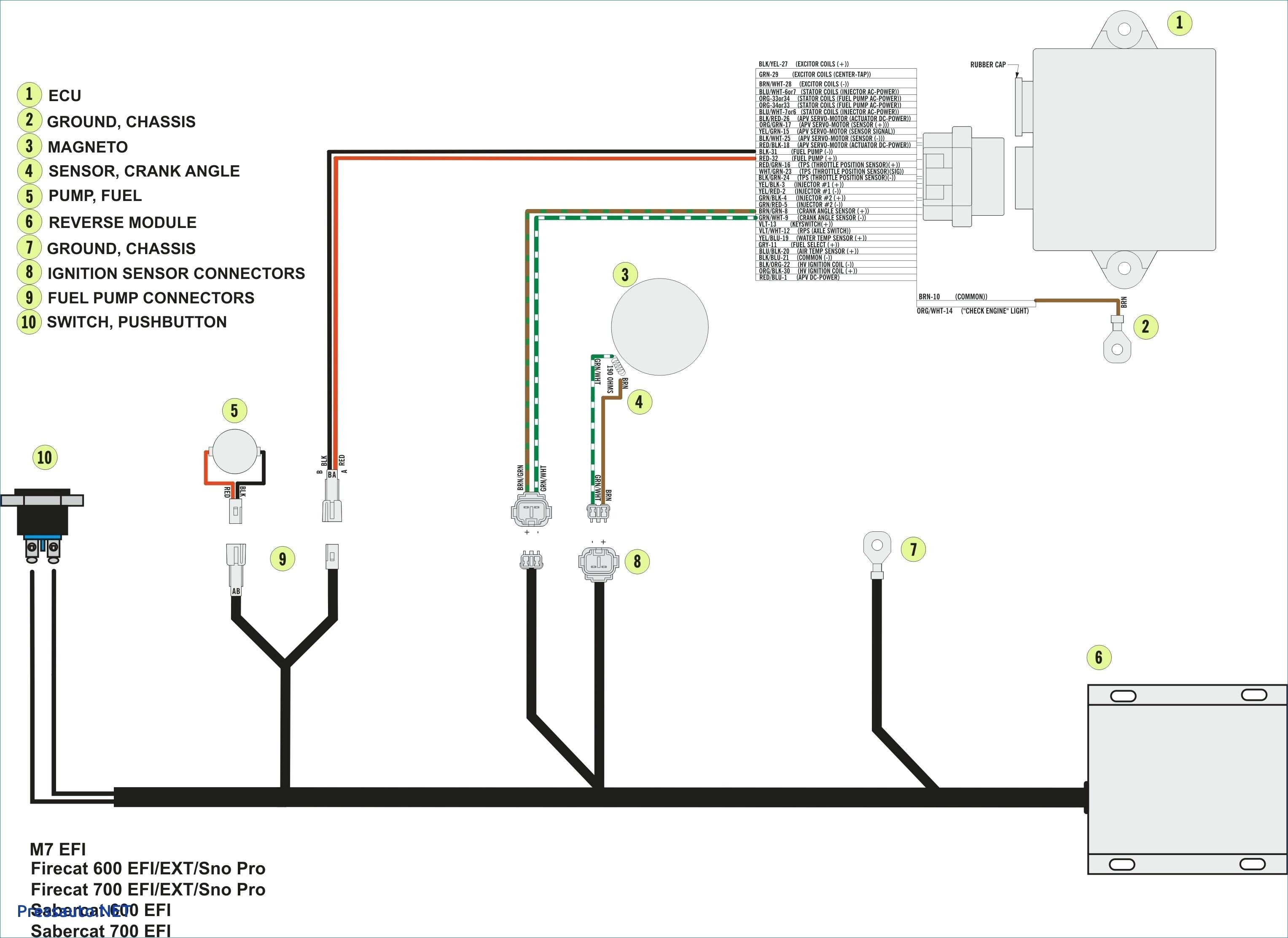 Friedland Transformer Wiring Diagram - Wiring Diagram Schematics