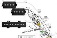 Fender Jazz Wiring Diagram Best Of Best Fender P Bass Wiring Diagram Contemporary Everything You Need