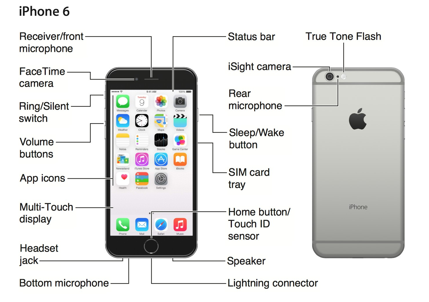 Physical Orientation via touch iPhone US iphone user guide pdf