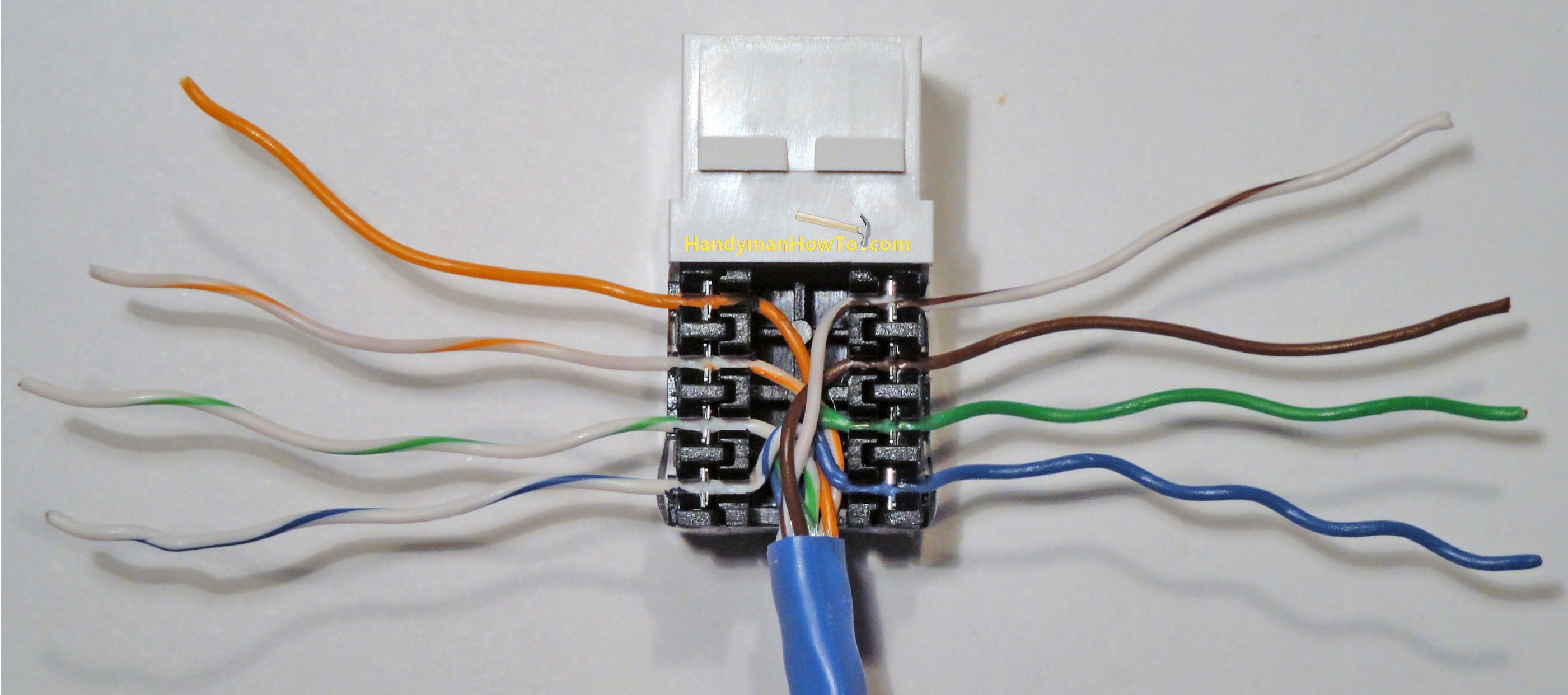 Beautiful Network Jack Color Code Gallery Everything You Need to