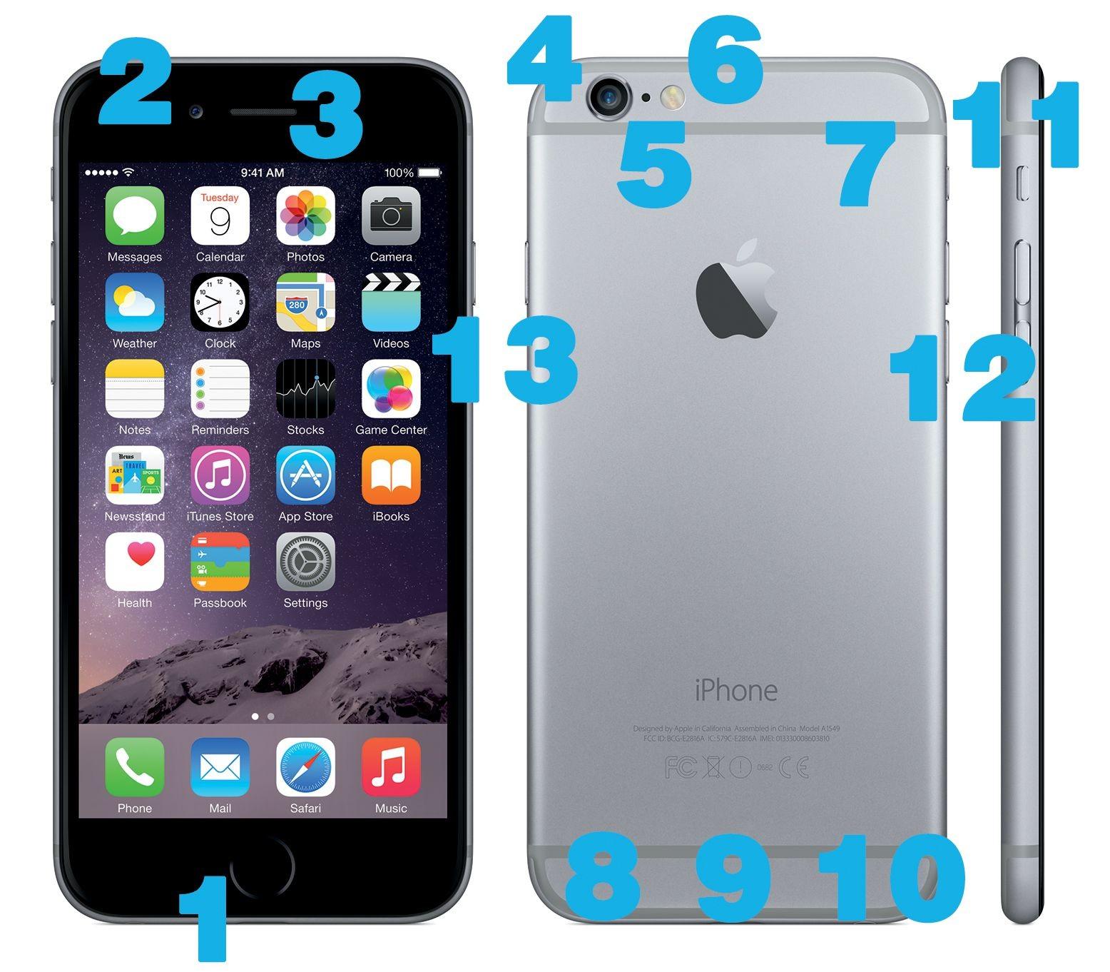 iphone 6 anatomy 56a f9b58b7d0db81e7