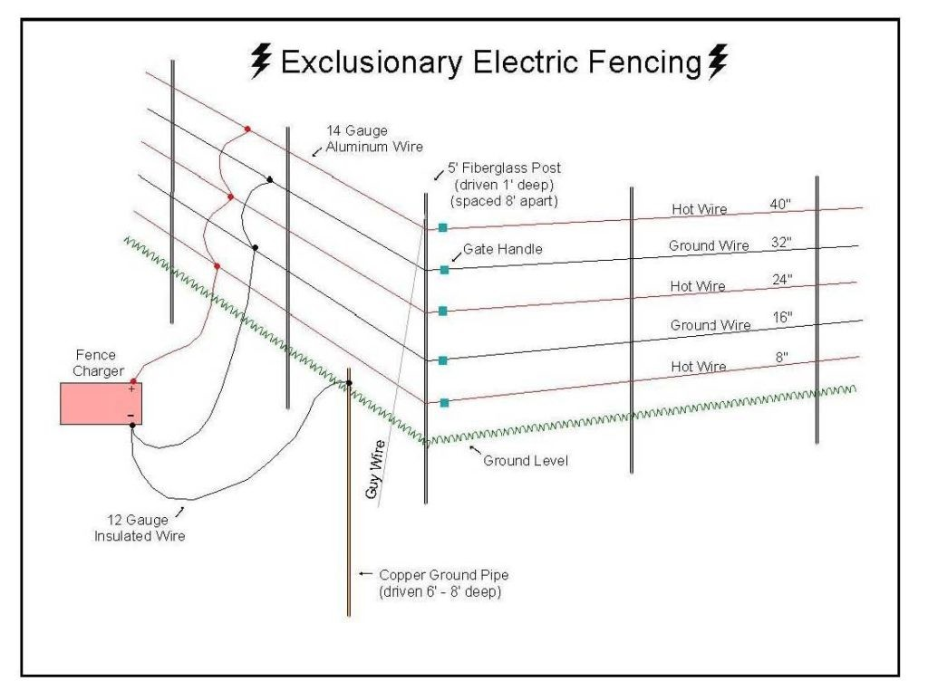 dog fence electric wire diagrams together with electric fence rh gethitch co nemtek electric fence wiring diagram electric dog fence wiring diagram