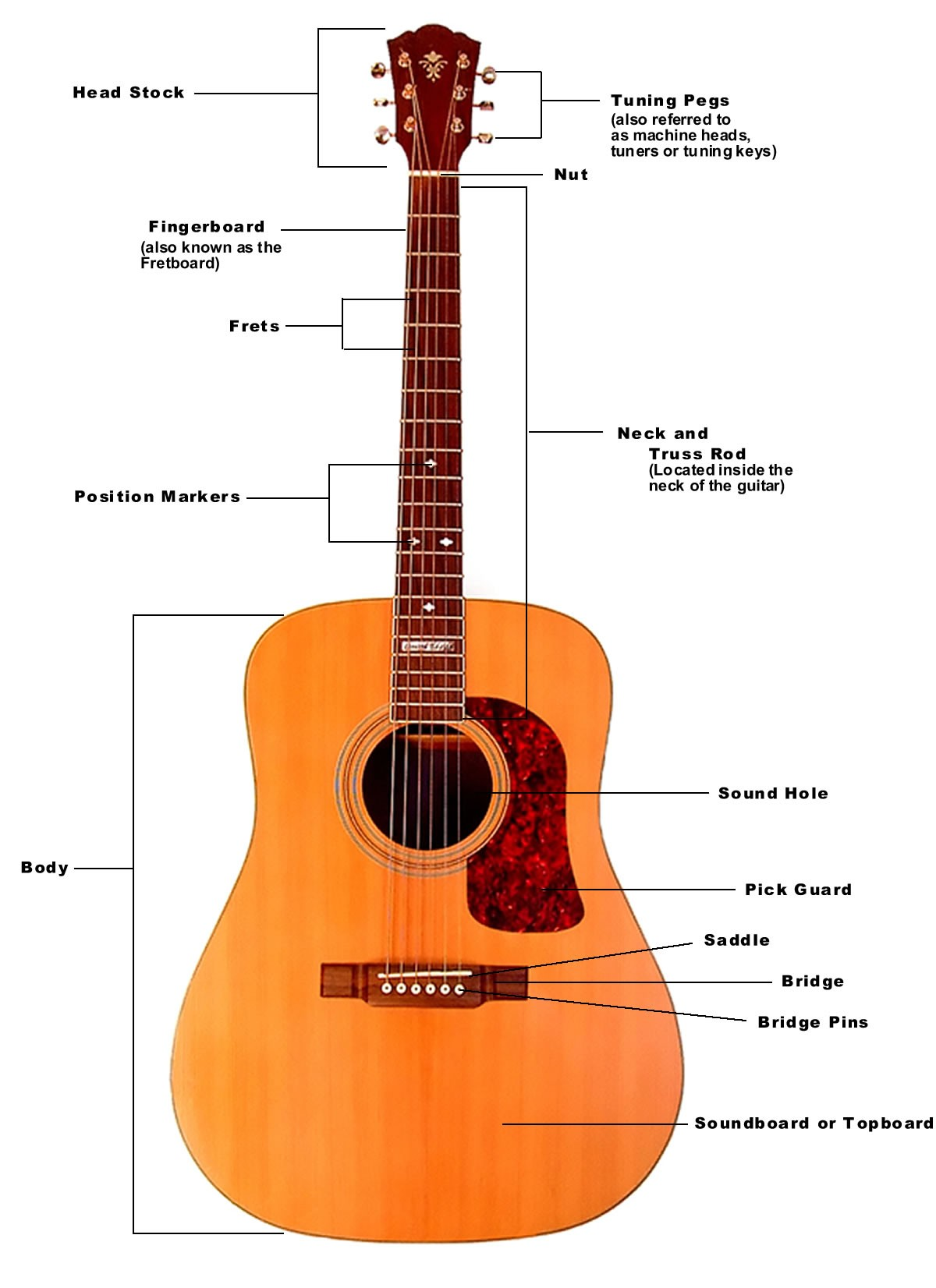 Taylor guitar wiring diagram amazing guitar diagram s electrical and wiring diagram ideas asfbconference2016 Images