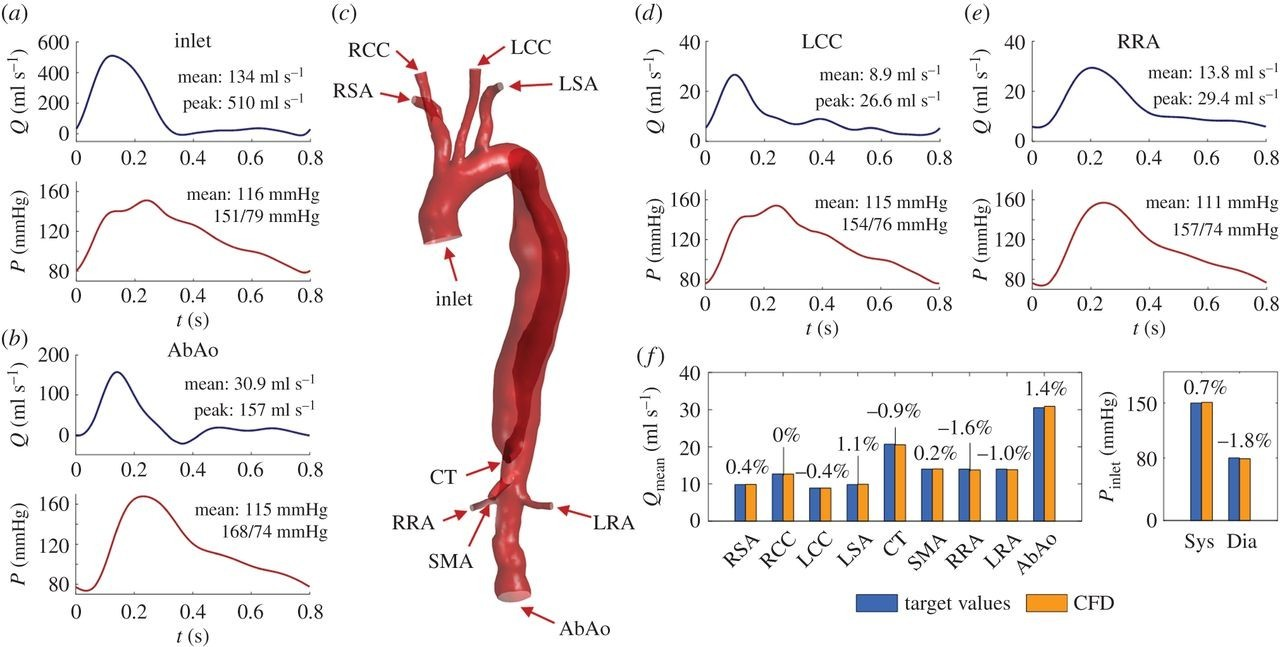 Download figure Journal of The Royal Society Interface from plete the schematic diagrams of arterial blood distribution