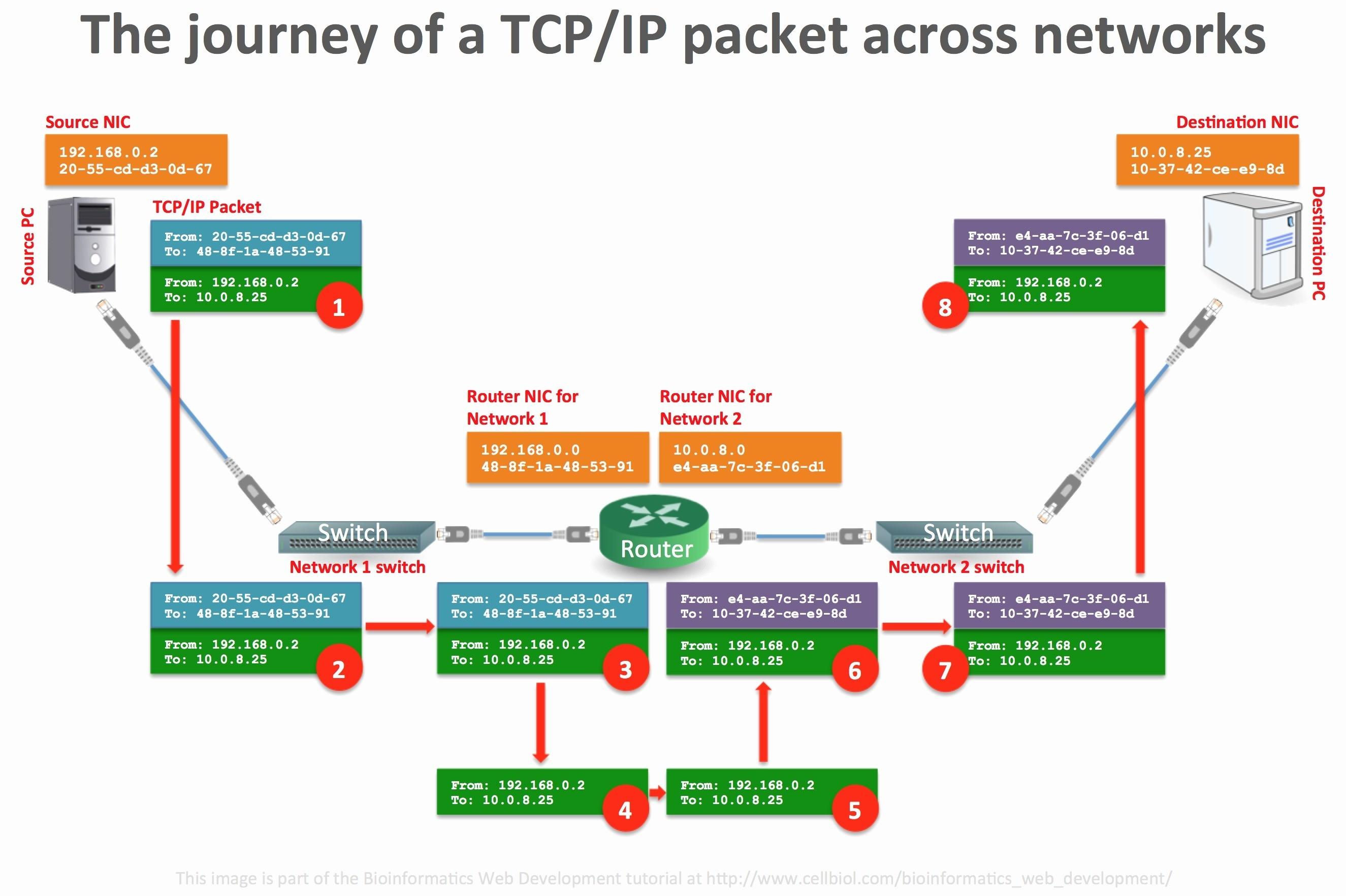 Lan Diagram Best Network Switch Diagram Fresh Web Diagram 0d – Wire Diagram