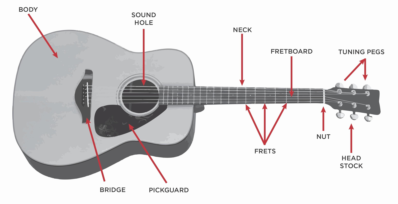 Acoustic Guitar Parts Diagram Best Acoustic Guitar Parts Diagram Acoustic Electric Guitar Parts Diagram