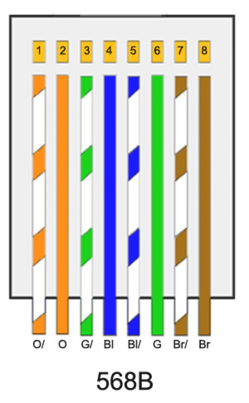 Modern Type B Cat 5 Wiring s Best for wiring diagram