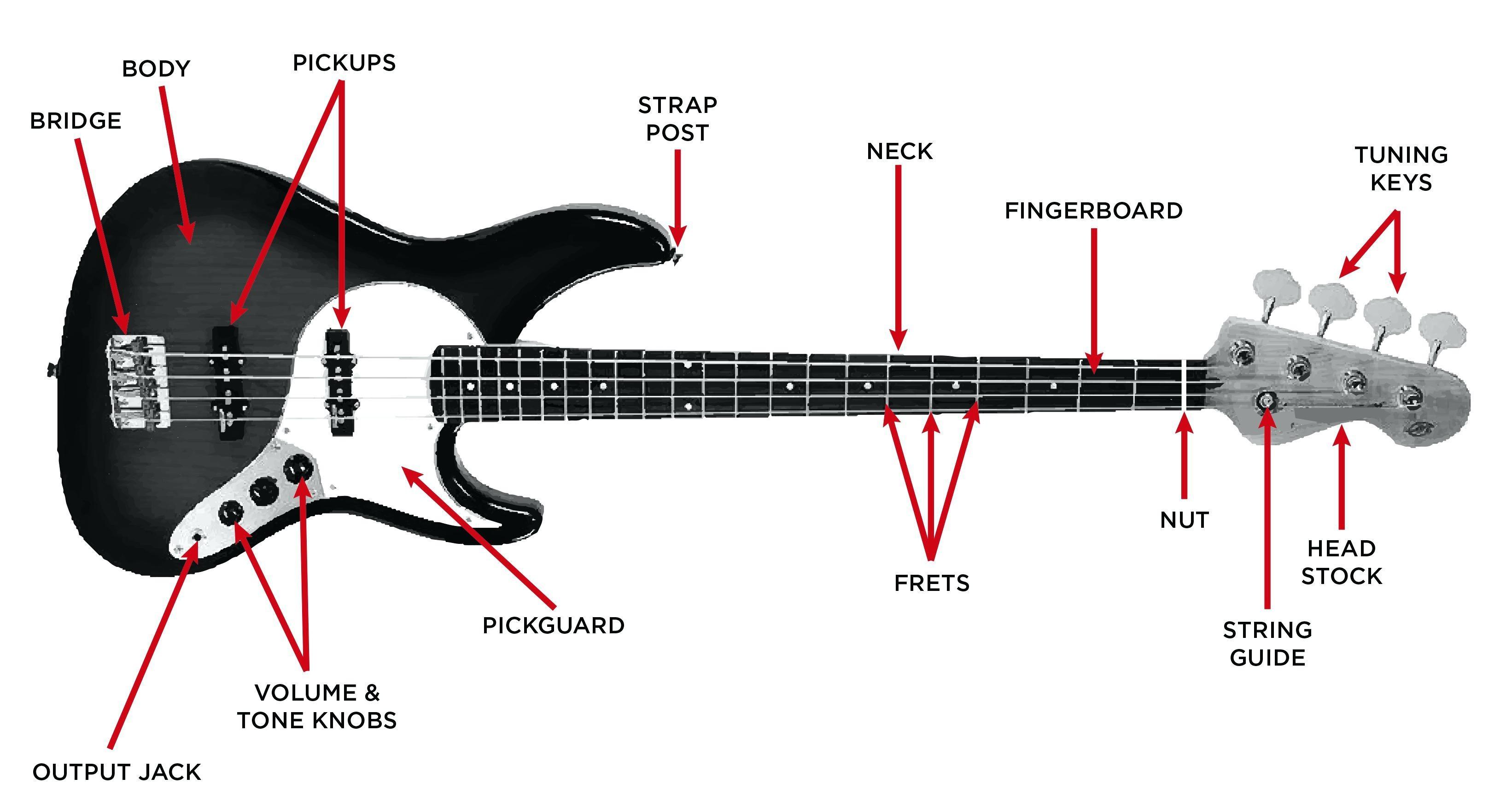 Fender Jazz Bass Pickup Wiring Diagram New Fender Bass Wiring Diagrams Hbphelp