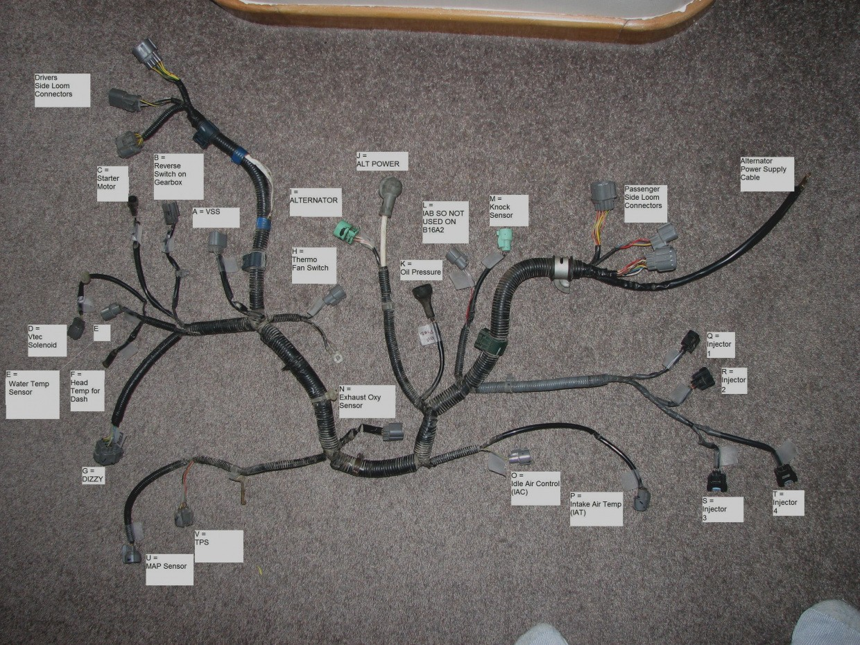 B16 Wiring Harness Diagram - Wiring Diagram Sys on ford door switch wiring diagram, ford dash gauge pod, ford f-250 ignition wiring diagram,
