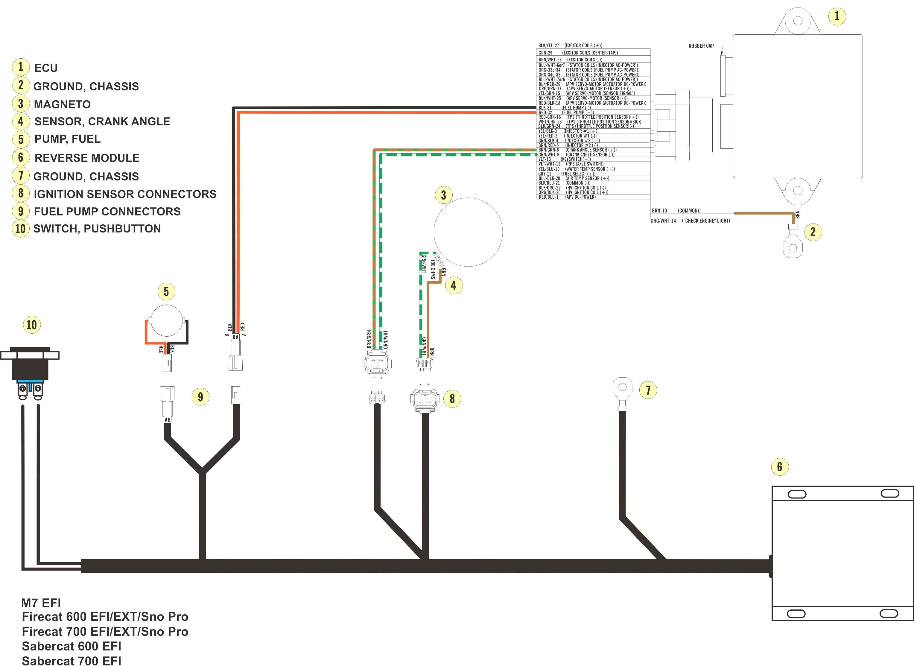 6 Pole Stator Wiring Diagram