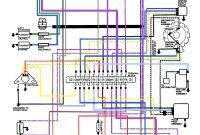 Evinrude Power Pack Wiring Diagram Unique Evinrude Power Pack Wiring Diagram Inspirational 70 Beautiful