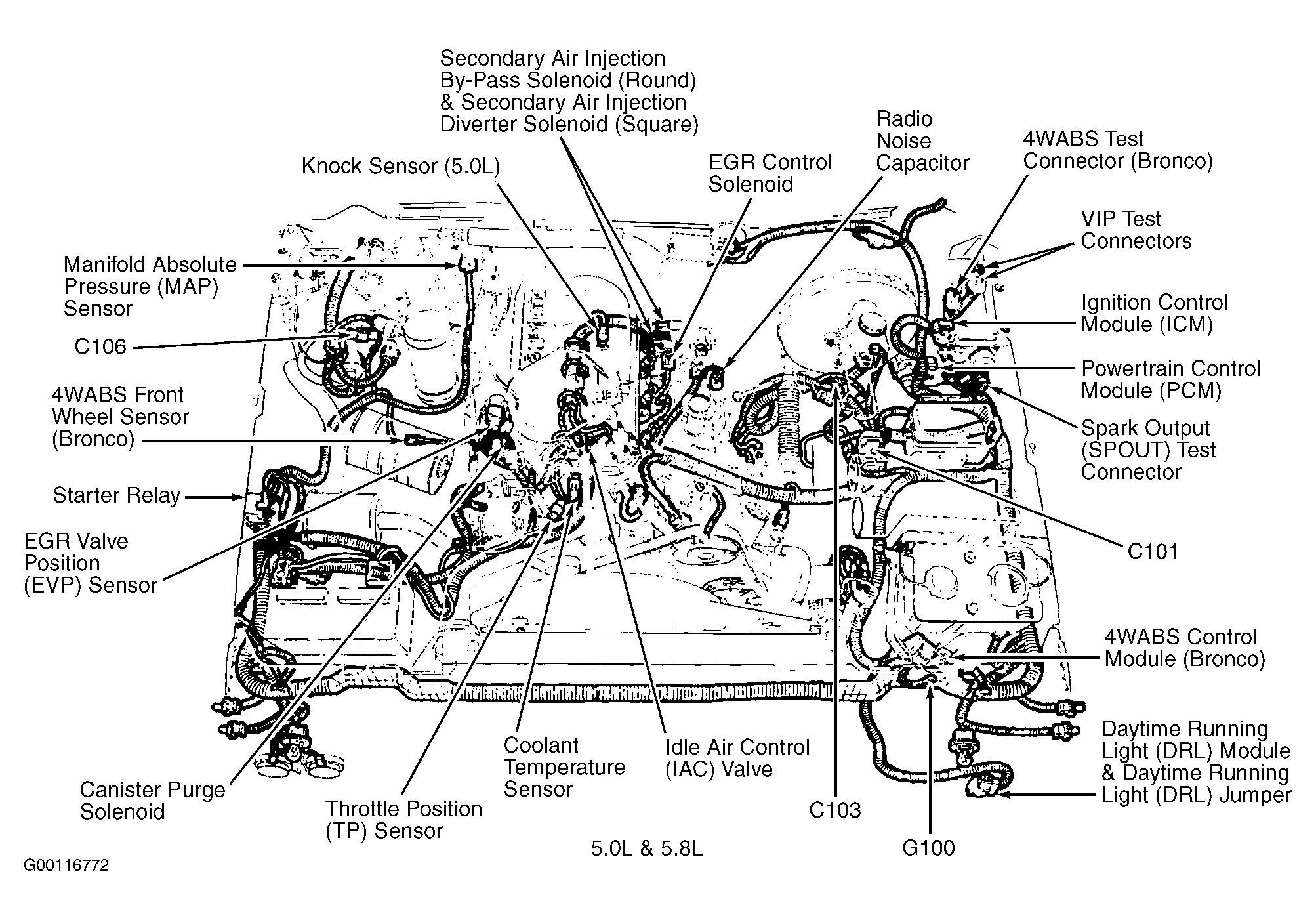 Ford 302 Engine Diagram Wiring Diagram Go 1989 302 Ford Engine Diagram