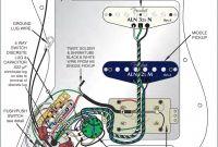 Image Strat Hss Wiring Diagram New Standard Fender Wiring Diagrams