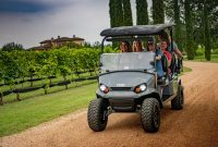 Textron(tsv, Ez-go) New E-z-go Industry's Best Golf Carts